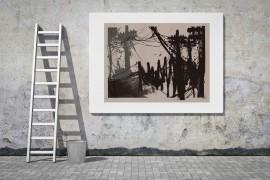 titi_freak_1_galeria_de_gravura