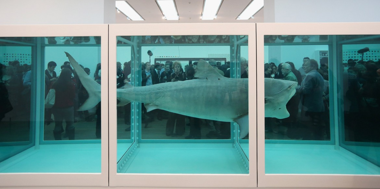 Damien Hirst - Tubarão