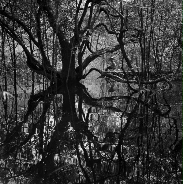 Marcel Gautherot - Fotografia Moderna